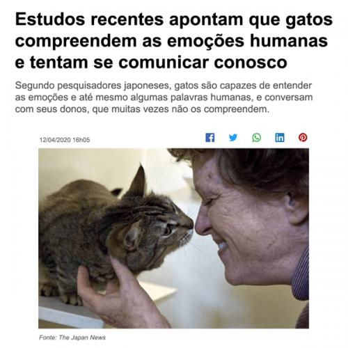 idioma felino valor